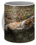 The Tiger's Rock  Coffee Mug