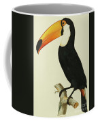 The Toco Toco Toucan  Ramphastos Toco Coffee Mug