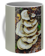 The Vine Runs Through It Coffee Mug
