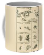 The Virgin Islands Coffee Mug
