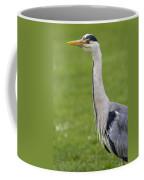 The Watchful Heron Coffee Mug