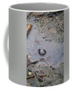 The Water Bubble Coffee Mug
