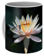 The Water Lily And The Dragonfly Coffee Mug by Sabrina L Ryan