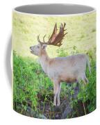 The White Stag 2 Coffee Mug