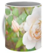 The White Washed Rose Coffee Mug