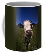 The Wideangled Cow  Coffee Mug