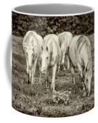 The Wild Horses Of Shannon County Mo 7r2_dsc1111_16-09-23 Coffee Mug