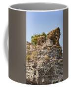 Theodosian Walls - View 1 Coffee Mug