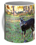 There Is A Twig Stuck In My Antlers Coffee Mug