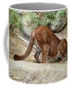 Thirsty Puma  Coffee Mug