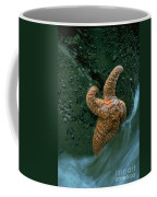 This Starfish Has A Good Grip Coffee Mug