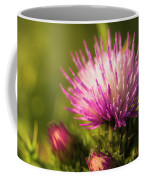 Thistle Flowers Coffee Mug