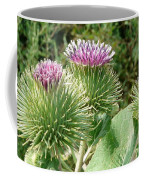 Thistle Trinity Coffee Mug