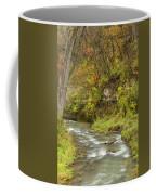 Thompson Creek Autumn 1 B Coffee Mug