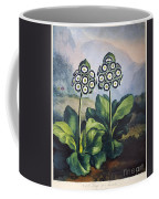 Thornton: Auriculas Coffee Mug