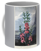 Thornton: Kalmia Coffee Mug