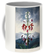 Thornton: Limodoron Coffee Mug