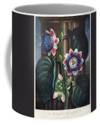Thornton: Passion-flower Coffee Mug