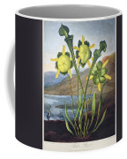 Thornton: Pitcher Plant Coffee Mug