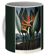 Thornton: Strelitzia Coffee Mug