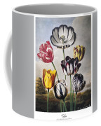 Thornton: Tulips Coffee Mug