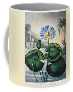 Thornton: Water Lily Coffee Mug