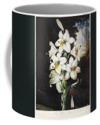 Thornton: White Lily Coffee Mug
