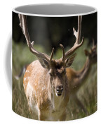Those Bloody Flies Coffee Mug