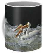 Three American Pelicans Coffee Mug