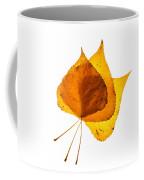 Three Backlit Cottonwood Leaves In Autumn On White Coffee Mug