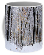 Three Creeks Conservation Area - Winter Coffee Mug