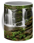 Three Falls Of Tremont Coffee Mug