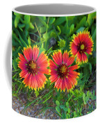 Three Gaillardia Coffee Mug