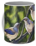Three Jays Coffee Mug