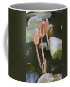 Three Lotus Buds Coffee Mug