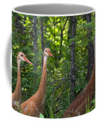 Three On A Walk Coffee Mug