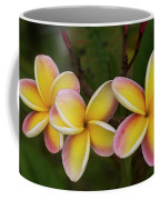 Three Pink And Yellow Plumeria Flowers - Hawaii Coffee Mug