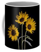 Three Sunflowers Light Painted On Black Coffee Mug