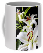 Three White Lilies Coffee Mug by Garry Gay