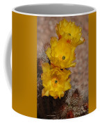 Three Yellow Cactus Flowers Coffee Mug