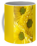 Three Yellow Daisies  Coffee Mug by Garry Gay