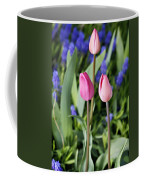 Three Young Tulips Coffee Mug