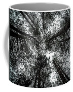 Through The Canopy Coffee Mug by Nick Bywater
