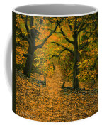 Through The Fallen Leaves Coffee Mug