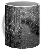 Through The Forest Canopy Black And White Coffee Mug