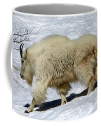 Through The Snows Coffee Mug