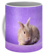 Thump Gorgeous Dwarf Rabbit Stamps His Foot  Coffee Mug