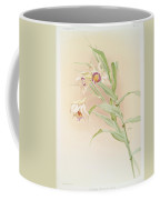 Thunia Brymeriana Coffee Mug