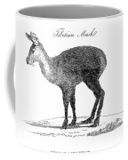 Tibetan Musk Deer Coffee Mug