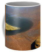 Tide Pool With Coquina Rock Coffee Mug
